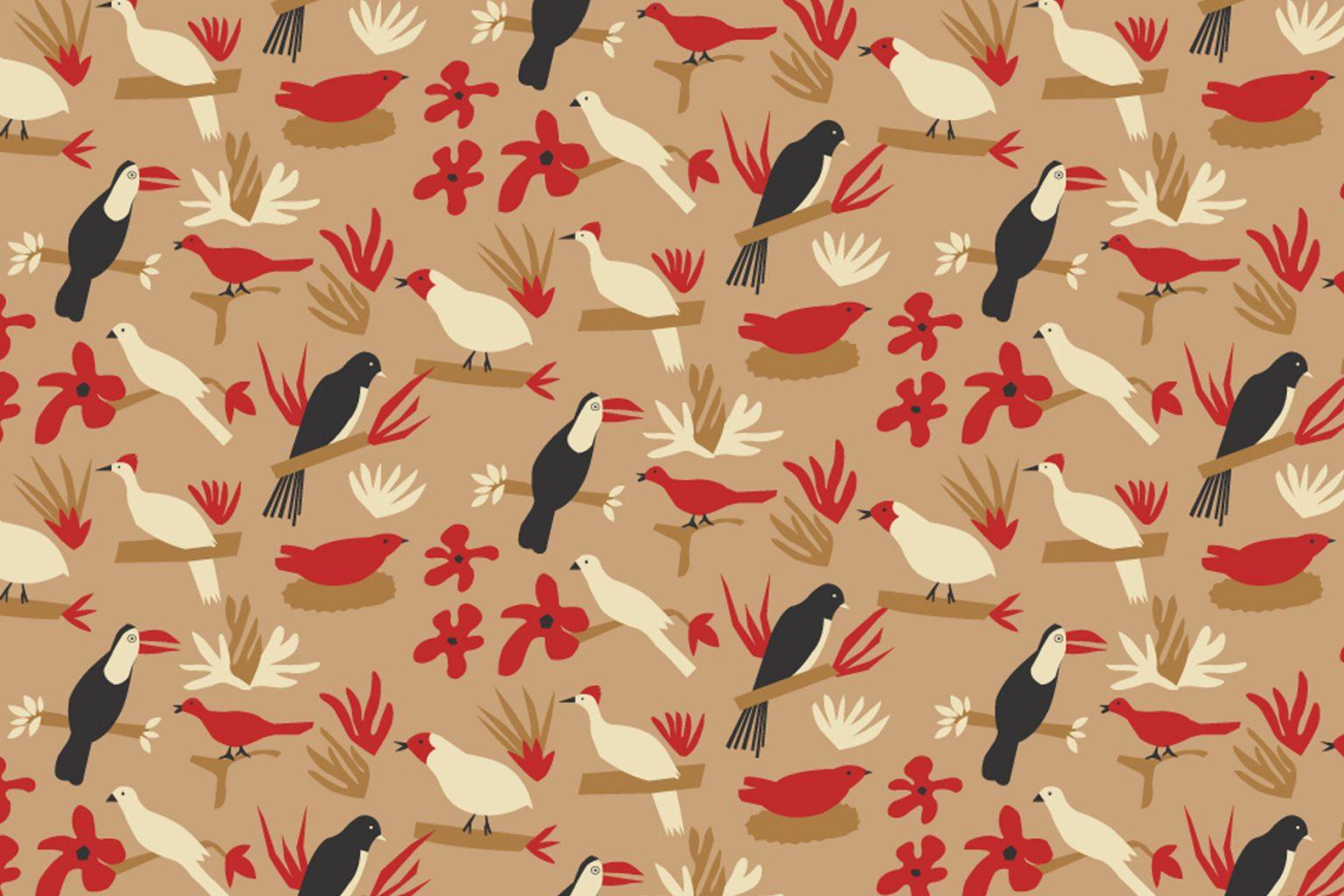 01_Pássaros-Brasileiros